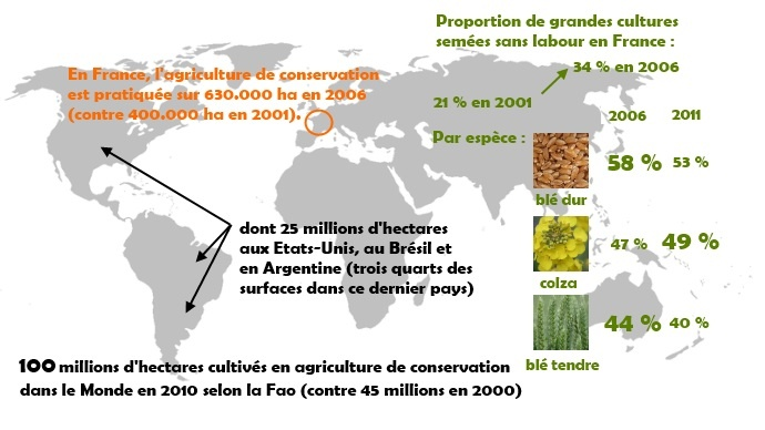 Agriculture de conservation dans le Monde